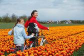 Family on bikes in spring flower fields — Stock Photo