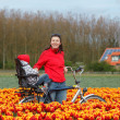 Family on bikes in spring flower fields — Stock Photo