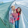 Family camping in the park — Stock Photo #22679921