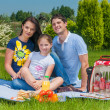 Family picnicking — Stock Photo