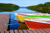 Lago na área de asbyrgi — Foto Stock