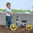 Foto Stock: Little boy on bicycle