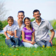 Happy family — Stock Photo #26083585