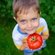 Stock Photo: Handsome little boy holding tomato in green garden