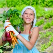 Vegetable garden - little gardener with bunch of organic carrots and beets — Stock Photo #26641667