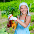 Vegetable garden - little gardener with bunch of organic carrots and beets — Stock Photo #26641677