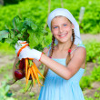 Vegetable garden - little gardener with bunch of organic carrots and beets — Stock Photo #26804011