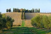 Landscape in tuscany. — Stock Photo