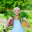 Stock Photo: Vegetable garden - little gardener with bunch of organic carrots and beets