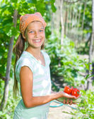 Portrait of beautiful girl holding tomatoes in green garden — Stock Photo