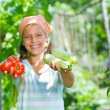 Portrait of beautiful girl holding tomatoes and zucchini in green garden. Focus on the vegetable. — Stock Photo