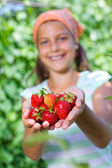 Portrait of beautiful girl holding strawberries in garden. Focus on the strawberries — Stock Photo