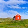 House in Iceland. — Stock Photo #27415079