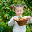 Cute girl in apple orchard — Stock Photo