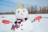 Real big snowman blue sky. — Stock Photo