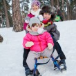 Children on sleds in snow — Stok fotoğraf
