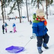 Boy on sleds in snow — Stock Photo
