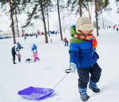 Boy on sleds in snow — Stockfoto