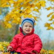 Baby boy in the autumn park — Stockfoto