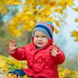 Baby boy in the autumn park — Stok fotoğraf