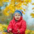 Baby boy in the autumn park — 图库照片