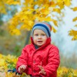 Baby boy in the autumn park — Stock Photo