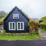Traditional icelandic house — Stock Photo #38181439