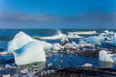 Ice blocks on a sand beach. — Stock Photo