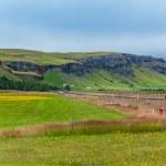 Landscape Iceland — Stock Photo #39900497