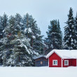 Beautiful super Finnish landscape — Stock Photo
