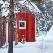 Red wooden finnish house in the forest. — Stock Photo #41386827