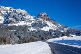 Asphalt road among snow — Stockfoto