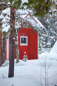 Red wooden finnish house in the forest. — Foto Stock