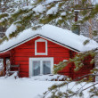 Red wooden finnish house in the forest. — Stock Photo