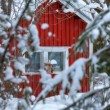 Red wooden finnish house in the forest. — Stock Photo #41410511