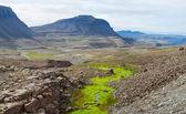 Summer Iceland Landscape — Stock Photo