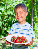 Little boy with strawberry. — Stock Photo