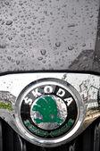 Skoda symbol — Stock Photo