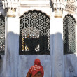 The women in the mosque ablution — Stock Photo