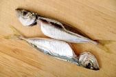 свежая рыба — Стоковое фото