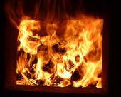Firewood blaze in firebox — Stock Photo