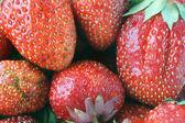 从草莓的红色浆果的背景 — 图库照片