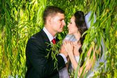 beautiful bride with groom — Foto Stock