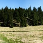 The valley of the Black Pockau in Erzgebirge — Stock Photo