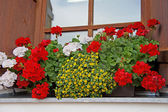 Floral decoration in Tyrol, Austria — Stock Photo