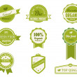 Eco Vintage Labels Bio template set — Stock Vector