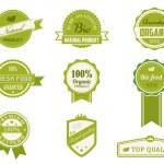 Eco Vintage Labels Bio template set — Stock Vector
