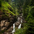 Alpine river in Bavaria — Stock Photo