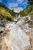 石やアルプスの岩 — ストック写真