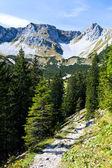 Sunny day in Bavarian Alps — Stock Photo
